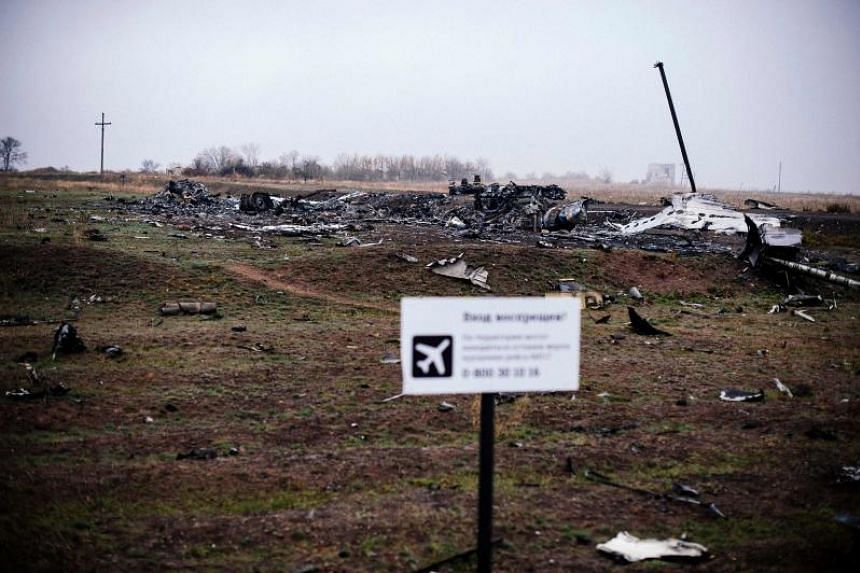 A photo taken on Nov 7, 2014, shows parts of the Malaysia Airlines Flight MH17 at the crash site in the village of Hrabove (Grabovo), in Donetsk region, eastern Ukraine.