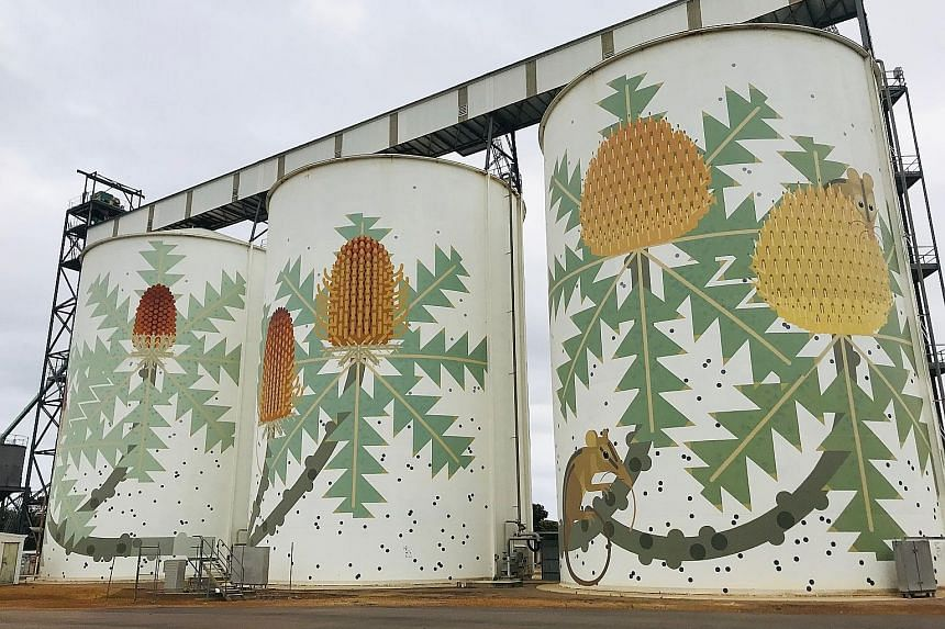 (Right) Fremantle-based artist Amok Island's 25m-high mural of banksia wildflowers wraps around three gigantic silos. (Below) The pink Lake Hillier on Middle Island. (Above) The Valley of the Giants walk offers a panoramic view atop the canopy of tre