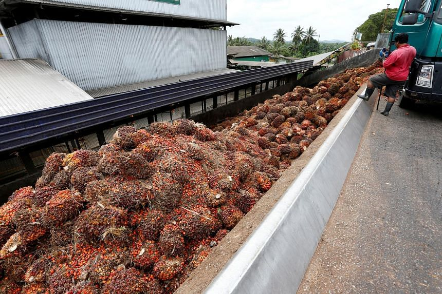 Malaysia is diversifying into food crops and poultry farming as part of plans to help the country's land settlers raise their income, by lowering their dependency on palm oil and rubber. The move comes as prices of tropical fruit and vegetables rise