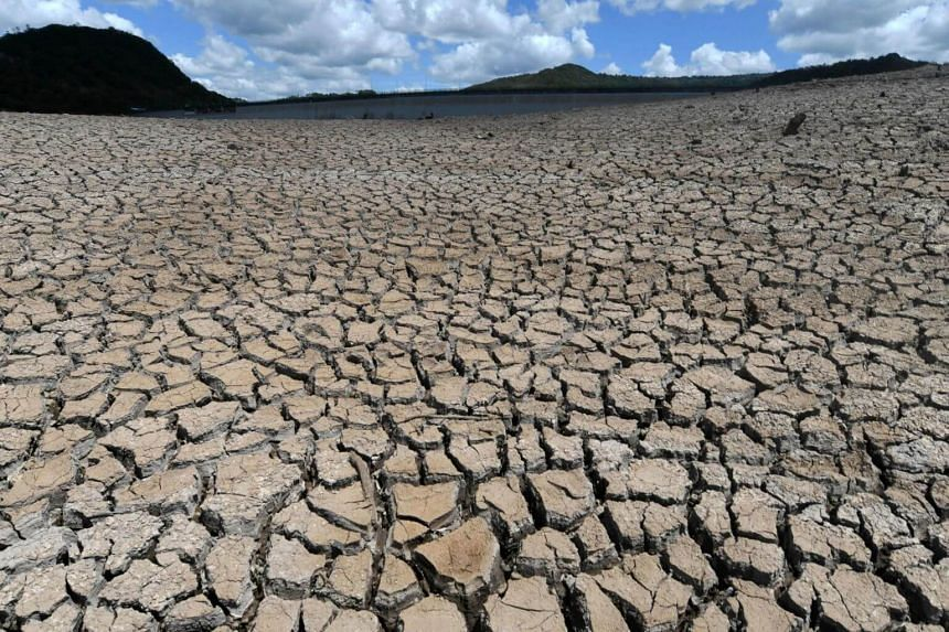 Failure to curb the greenhouse gas emissions slow-roasting the planet has already unleashed a crescendo of deadly heat waves, water shortages and superstorms made more destructive by rising seas.