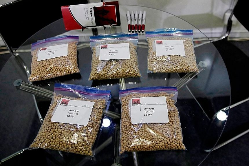Packets of American soya beans at a soya bean exhibition in Shanghai last year. China is considering whether to allow renewed imports of soya beans, pork and other American agricultural products. PHOTO: ASSOCIATED PRESS