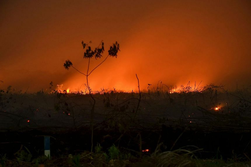 A photo taken on Sept 9 shows a forest fire lighting up the night sky in Kampar, in Indonesia's Riau province.