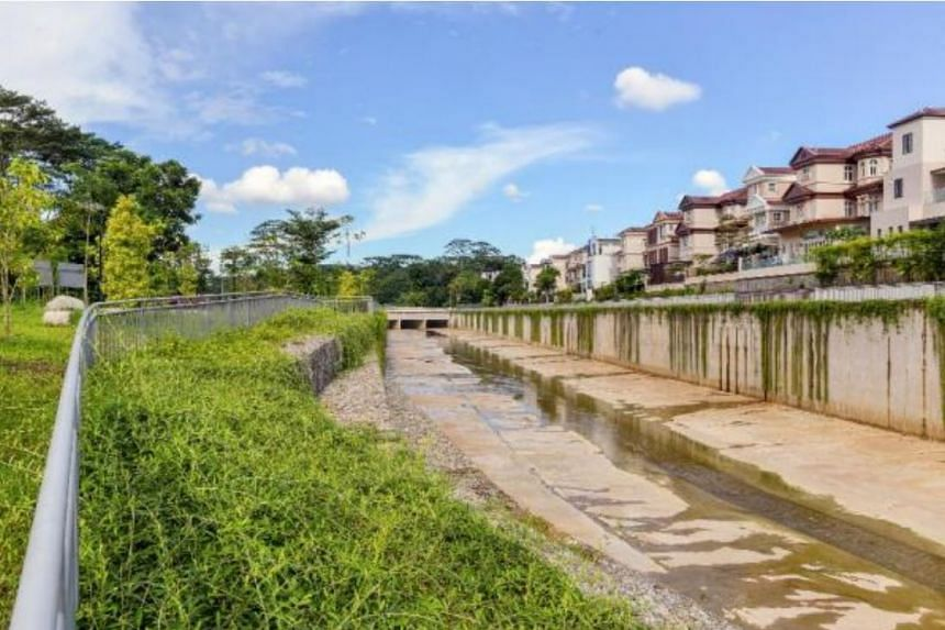 Upgraded section of the Bukit Timah First Diversion Canal along Holland Green.