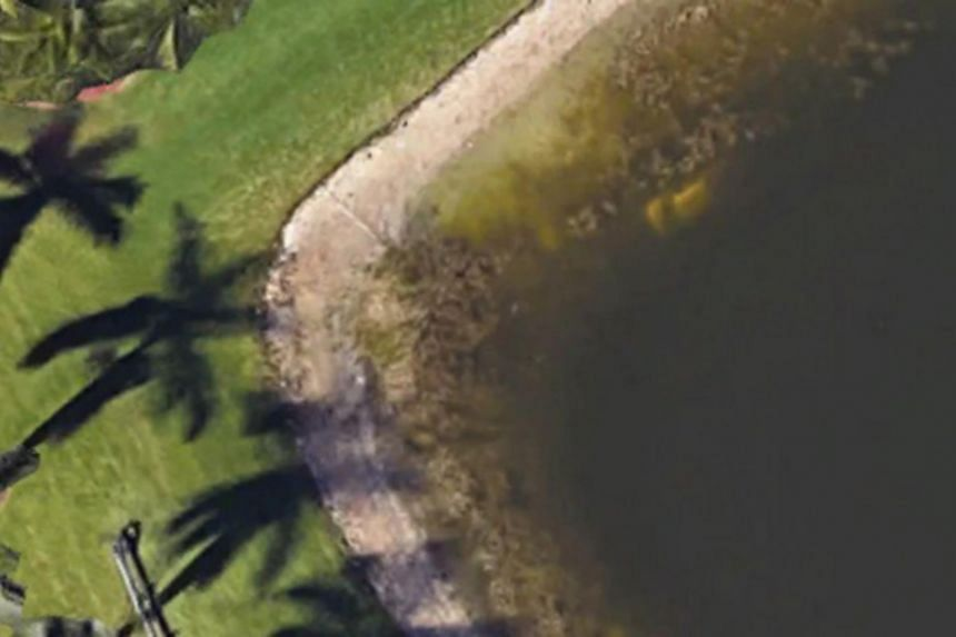 """A previous resident was doing a """"Google search"""" on Google Earth in the Palm Beach area and noticed what appeared to be a vehicle in the pond behind a residence."""