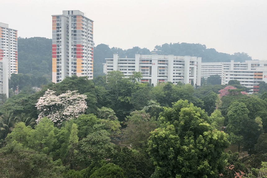 A photo taken in Bukit Purmei shows haze over the neighbourhood at around 3.15pm on Sept 14, 2019.
