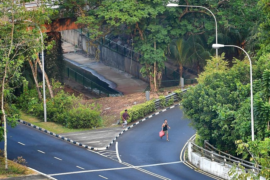 A man, suspected to be staying in the nearby forest at Chestnut Nature Park, washing his clothes using water from a monsoon drain. The men selling contraband cigarettes sprinting across a filter lane meant for vehicles exiting Bukit Timah Expressway