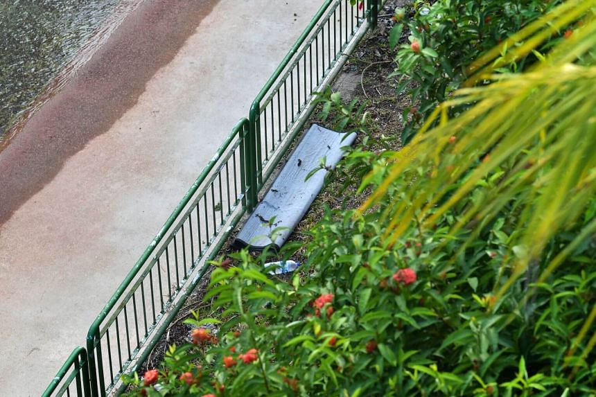 An upturned carpet, found under the Zhenghua Flyover in Bukit Panjang, is used as a temporary resting and sleeping platform for men who have been staying in the nearby forest.