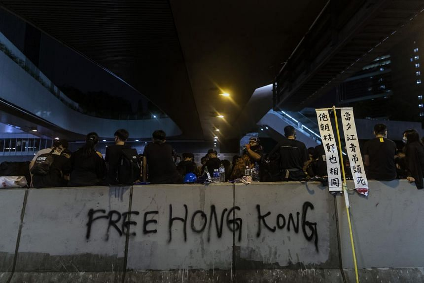 Hong Kong's tourism sector has been decimated by footage beamed around the world of leaderless protests that have occasionally flared into violence and affected the city's airport.