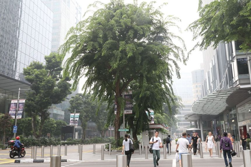 The hazy streets of Orchard Road at 10am on Sept 18, 2019.