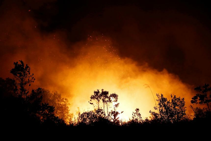 Trees and peatland burn in a fire in Palangka Raya, Central Kalimantan province, Indonesia, on Sept 17, 2019.