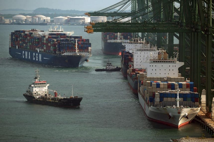 A photo taken on July 26 shows container ships berthed at the PSA Pasir Panjang Terminal. Singapore and Panama are among the top five ship registries in the world.