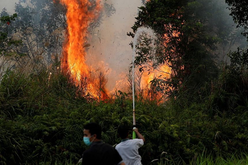 Volunteer firefighters try to extinguish fires at a peatland forest in Pulang Pisau regency near Palangka Raya, Central Kalimantan province, on Sept 13, 2019.