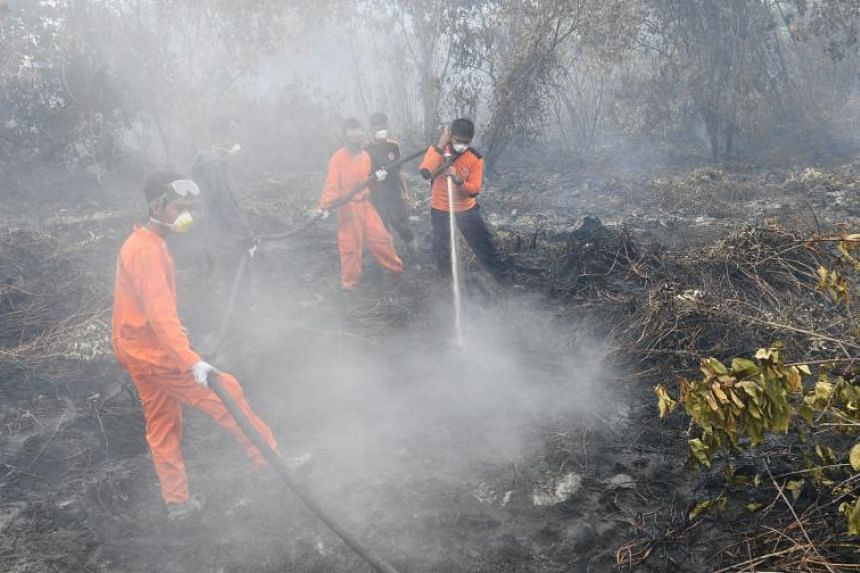 One of the fires being battled in the heart of the Riau capital was in an area measuring some 15ha in Bukit Raya - roughly the size of 10 football fields.