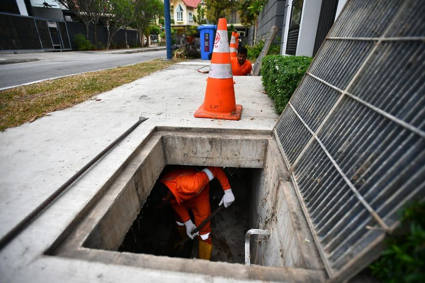 A worker clears drains at Hemsley Avenue on Sept 14, 2019. All three cases in the cluster formed on Sept 13 involved residents in the vicinity, said the National Environment Agency in a statement.