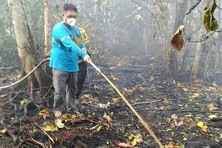 Mr Benjamin Tay, executive director of charity PM Haze (People's Movement to Stop Haze), helping community firefighters fight a peat fire in a forest near Tanjung Sari village in Riau province, Indonesia, during the weekend. PHOTO: COURTESY OF BENJAM