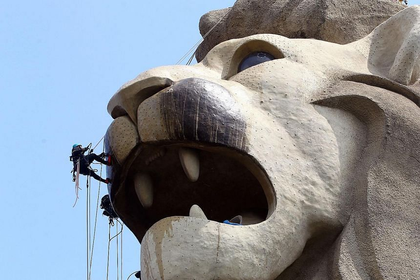 The Sentosa Merlion lit up during a Merlion Magic Lights show in 2017. Built in 1995, the $8 million statue, with a height of 37m, is the tallest Merlion in Singapore. PHOTO: SENTOSA The Sentosa Merlion being cleaned with hot water by an abseiling cr
