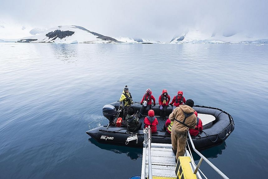 An Antarctica expedition cruise to the white continent, where travellers get to see glaciers, icebergs and wildlife such as penguins, whales and seals in their natural habitat.