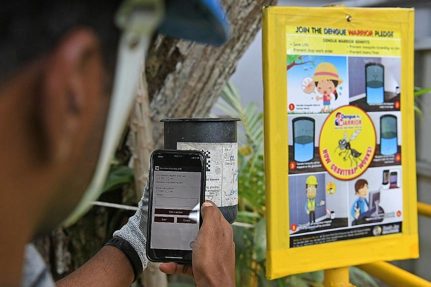 A construction worker using a phone app to monitor the mosquito population in a Gravitrap cylinder at the Tanjong Katong MRT station worksite yesterday.