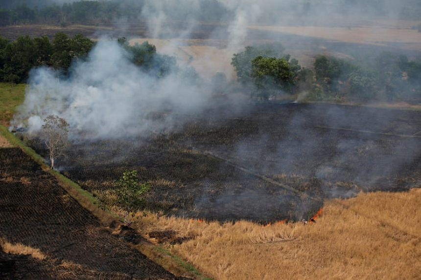 Indonesia has spent months battling forest fires as an El Nino weather pattern intensifies the annual dry season and fires create a choking haze across the region.
