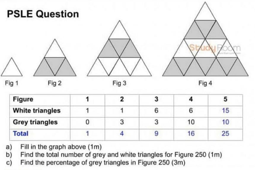 One question in this year's Primary School Leaving Examination mathematics paper asked pupils to figure out patterns in a set of triangles.