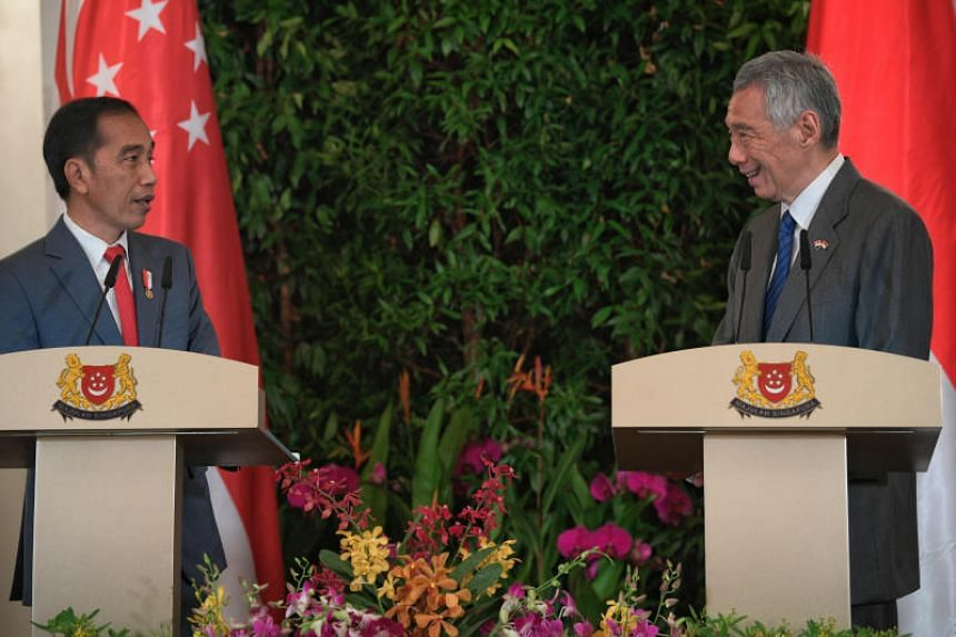 Prime Minister Lee Hsien Loong and Indonesian President Joko Widodo during a joint press conference at the Singapore-Indonesia Leaders' Retreat at the Istana on Oct 8, 2019.