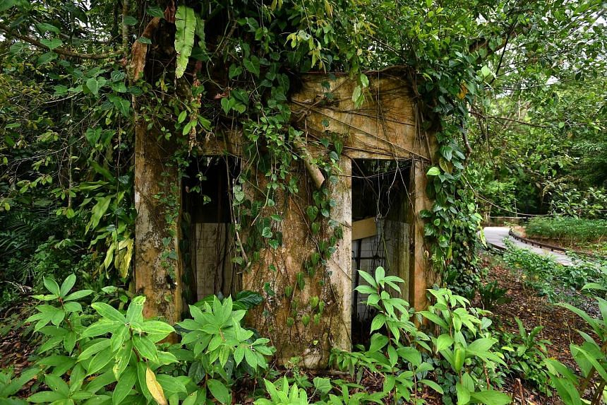 Remnants of village life, like this kampung hut, can be found along the trails in the park.