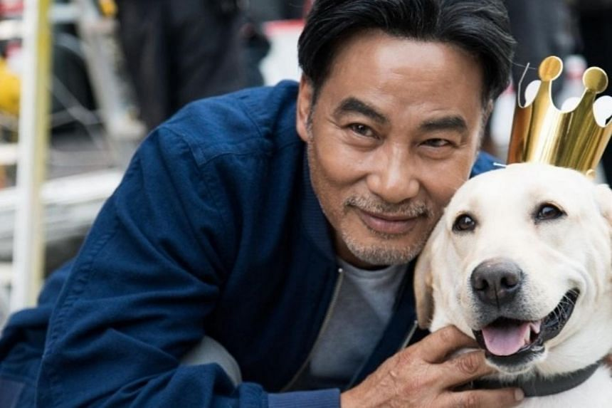 Simon Yam has returned to work after he was discharged from a Hong Kong hospital, recently promoting his movie Little Q, about a chef's relationship with a dog.