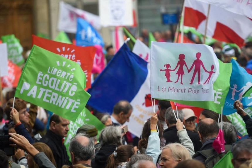Demonstrators wave flags and hold signs as they take part in a protest against a government plan to let single women and lesbians become pregnant with fertility treatments, on Oct 6, 2019 near the Pantheon in Paris.