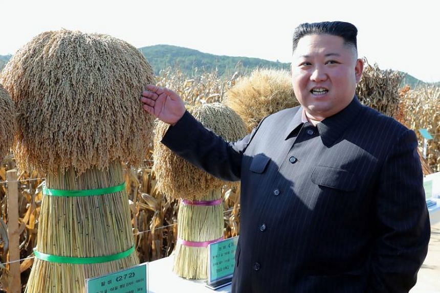 In a photo released by North Korean state news agency KCNA on Oct 9, 2019, North Korean leader Kim Jong Un was seen inspecting Farm No. 1116 under Unit 810 of the Korean Peoples' Army, at an undisclosed location in the country.
