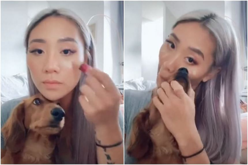 In a Tik Tok video posted in an animal lovers' group on Facebook, Sandra Riley Tang is seen applying concealer to her face and using her dog's nose to smooth it out.