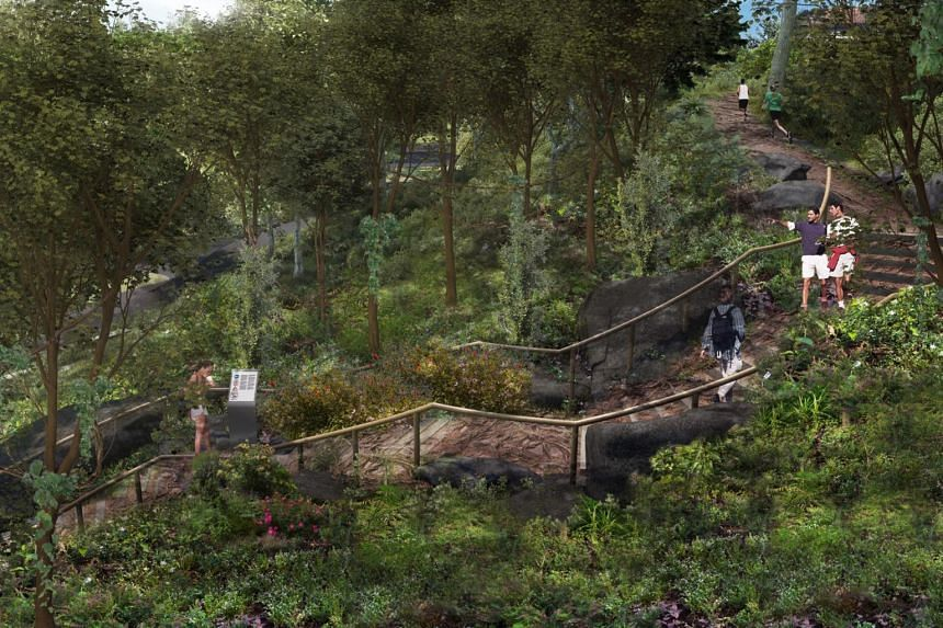 The Mingxin Foundation Rambler's Ridge at the Botanic Gardens' Gallop extension will recreate hill-slope and cliff-edge habitats found in the region.