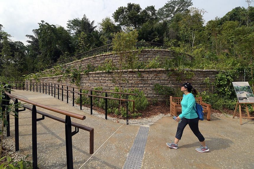 Those taking a hike along the newly opened Mingxin Foundation Rambler's Ridge can enjoy plants from habitats found in the tropical hills of South-east Asia. The ridge is part of the 8ha Gallop Extension, located in Gallop Road. Visitors can access th