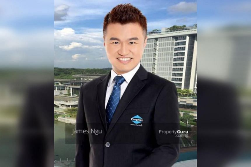 Real estate agent James Ethan Ngu Ping Chuan has been fined $30,000 and suspended for 12 months.