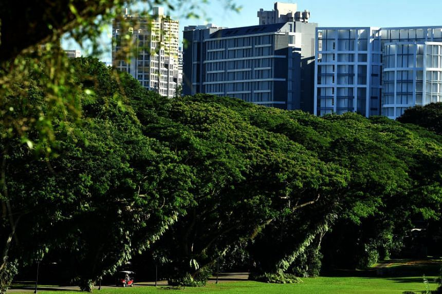 Lined with rain trees, Edinburgh Road will take you from the Istana's entrance along Orchard Road all the way to the main building.
