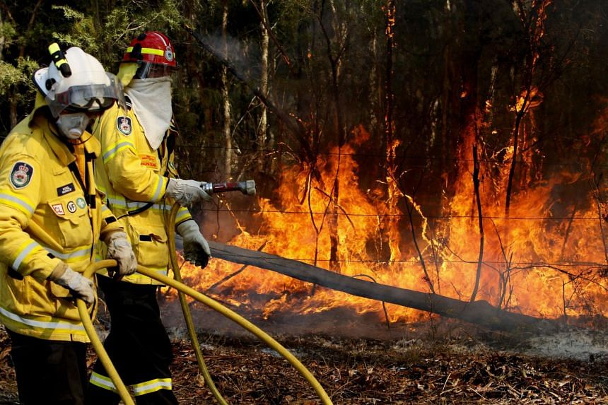 Firefighters work to extinguish a fire near Forster, New South Wales, Australia, on Oct 27, 2019.