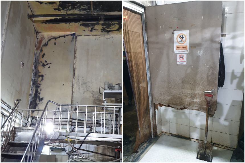 The Singapore Food Agency said that Dolford Food Manufacturing was found to have structural damage to its flooring, wall tiles and doors and a widespread cockroach infestation.