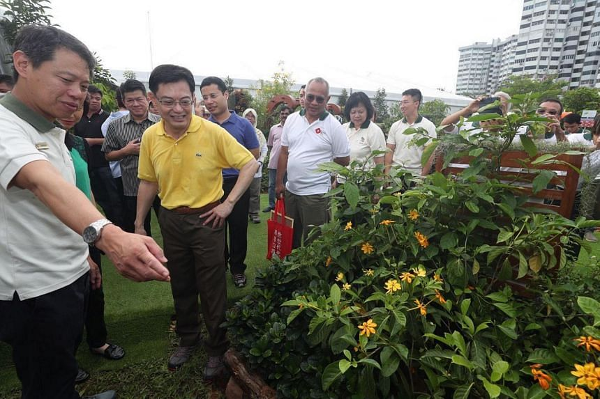 DPM Heng Swee Keat (in yellow) and Social and Family Development Minister Desmond Lee (in blue)  at the opening of the Community Garden Festival 2019 at Jurong Lake Gardens.