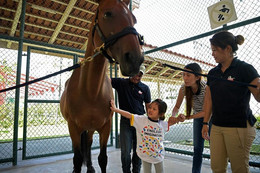 Janice Png, four, who has autism spectrum disorder, being led by her mother, Ms Koh Ming Hui, 32, as she strokes a therapy horse during the launch of Wednesdays With Horses - a horse therapy programme that aims to help people with special needs open