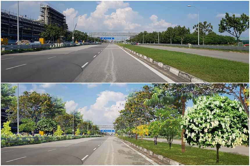 The current Banyan Avenue on Jurong Island (top). Banyan Avenue on Jurong Island after a greening initiative by JTC and NParks to plant 30,000 trees on the industrial island (bottom).