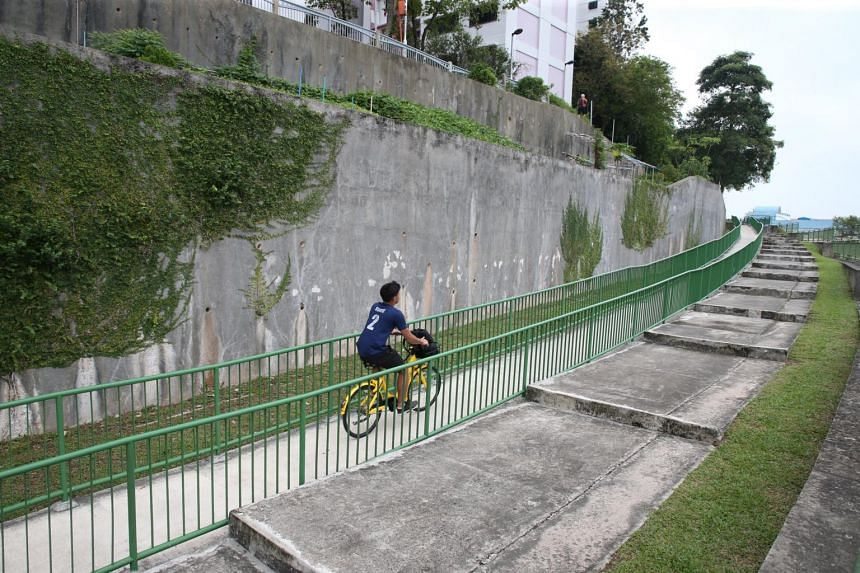 A cyclist on the Pang Sua park connector.