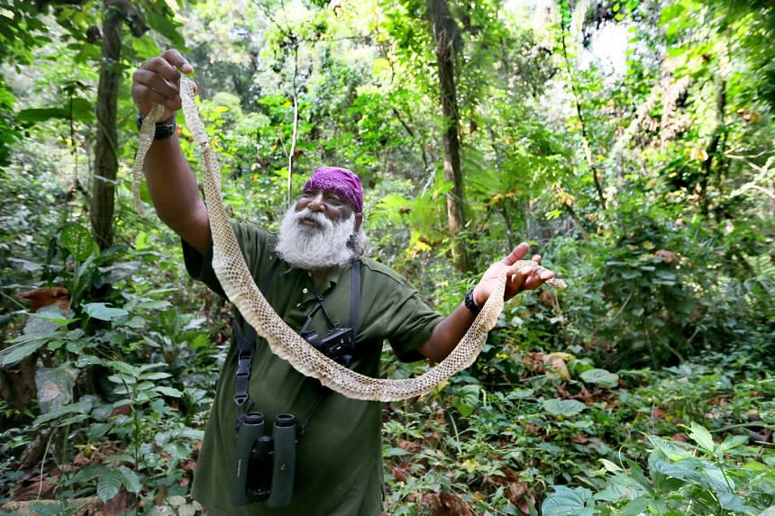 Singaporean wildlife consultant Subaraj Rajathurai is well known for his passion and knowledge of nature, and for being an outspoken advocate for Singapore's native wildlife.