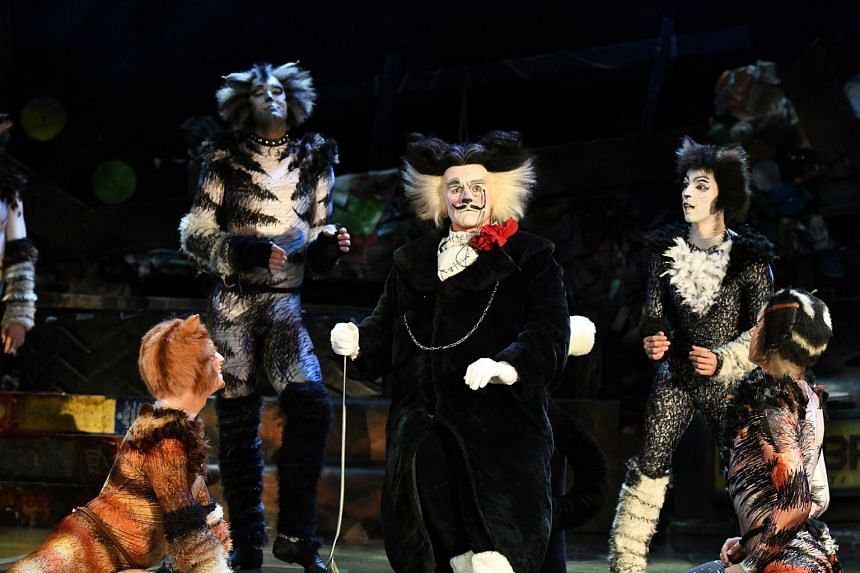 7. CATS THE MUSICAL EDUCATION RESOURCE PACK.