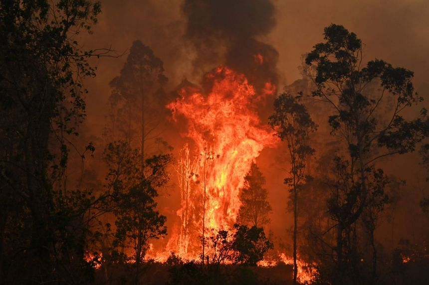 The New South Wales Rural Fire Service said that they were expecting severe and extreme threat of fire across broad parts of Australia's most populous state.