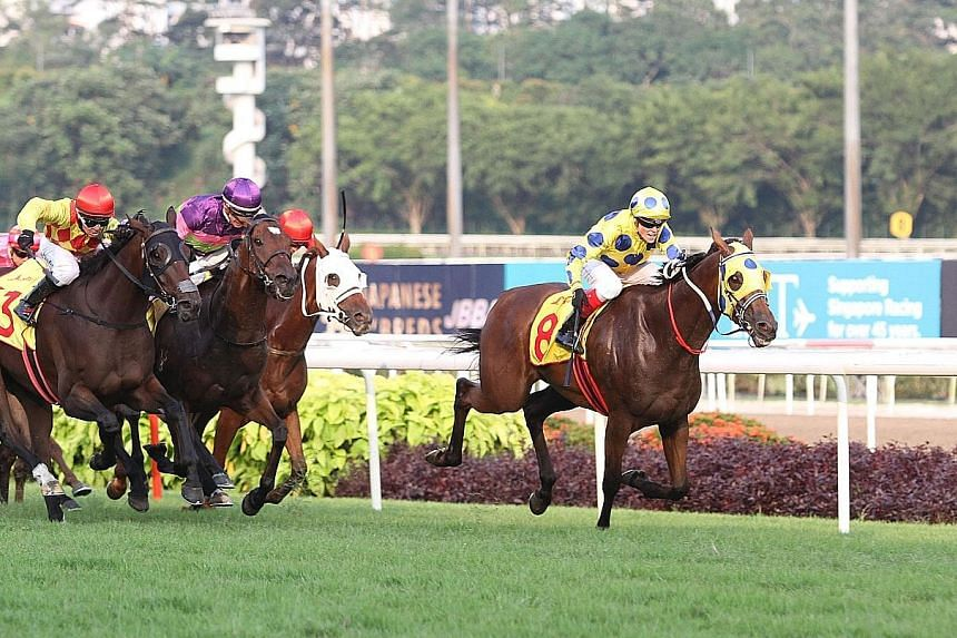 Mr Clint (right), ridden by Melbourne Cup winning jockey Craig Williams, galloping to victory in the Dester Singapore Gold Cup at Kranji yesterday