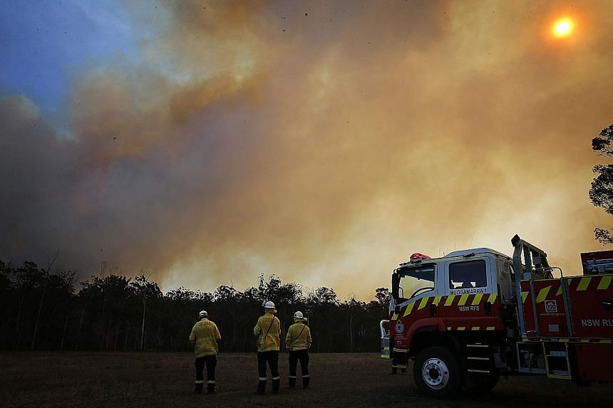 Smoke rising from a bush fire as firefighters surveyed the situation in Old Bar, near Taree in New South Wales, yesterday. More than 100 fires were still burning across New South Wales and Queensland states. PHOTO: DPA