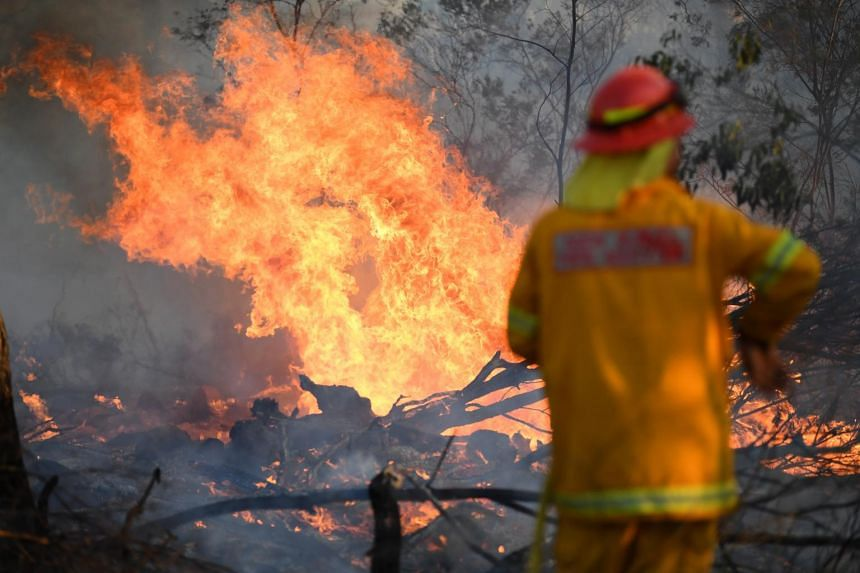 A firefighter works to contain a bushfire near Glen Innes, New South Wales, Australia, on Nov 10, 2019.