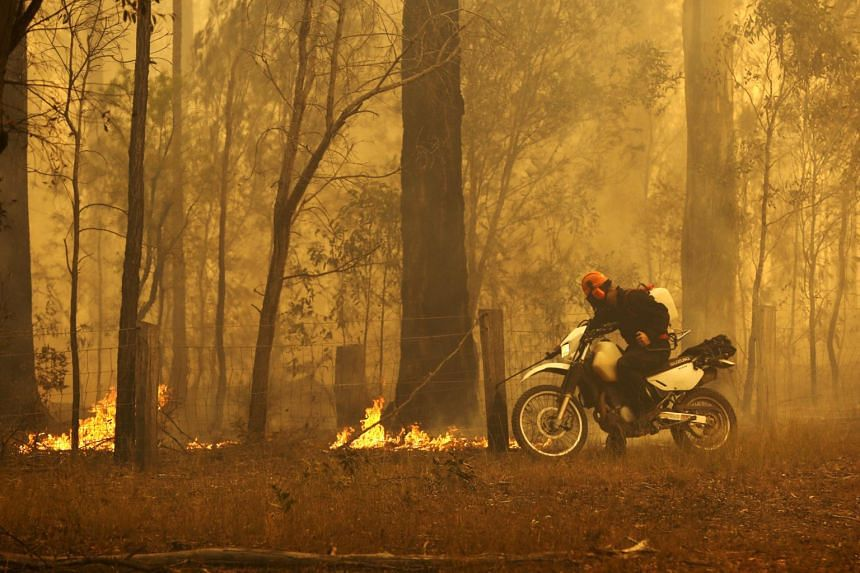 A resident puts out small fires as he rides his motorcycle in Old Bar, New South Wales, Australia, on Nov 10, 2019.