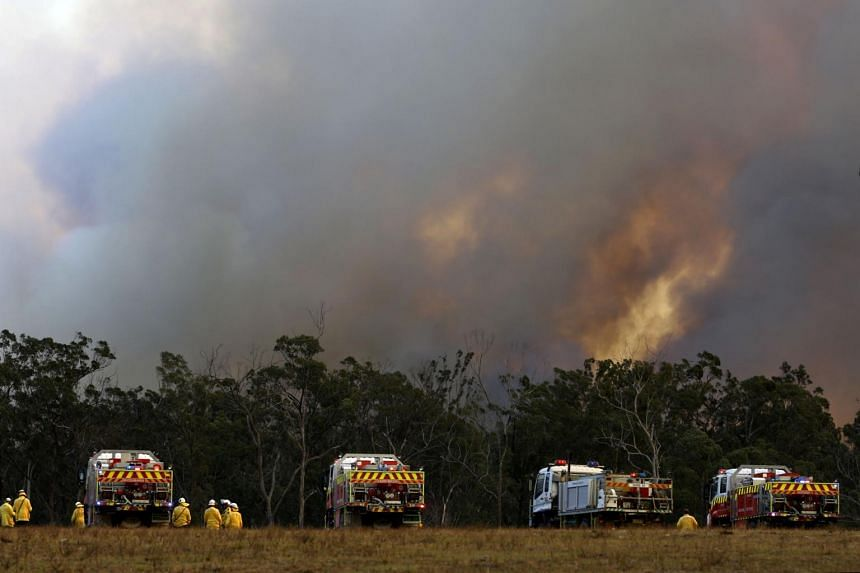 Firefighters look at a bushfire approaching in Old Bar, New South Wales, Australia, on Nov 10, 2019.