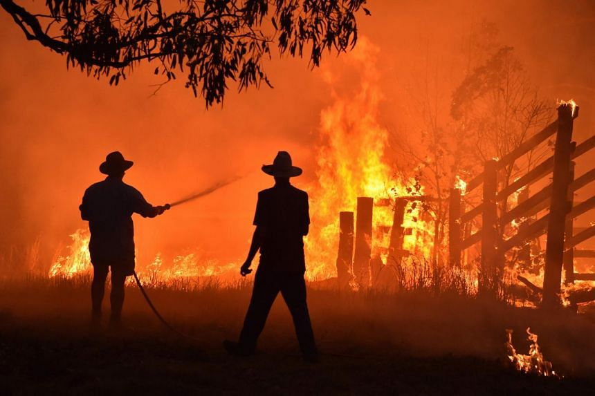 Residents defend a property from a bush fire at Hillsville near Taree, 350km north of Sydney on Nov 12, 2019.