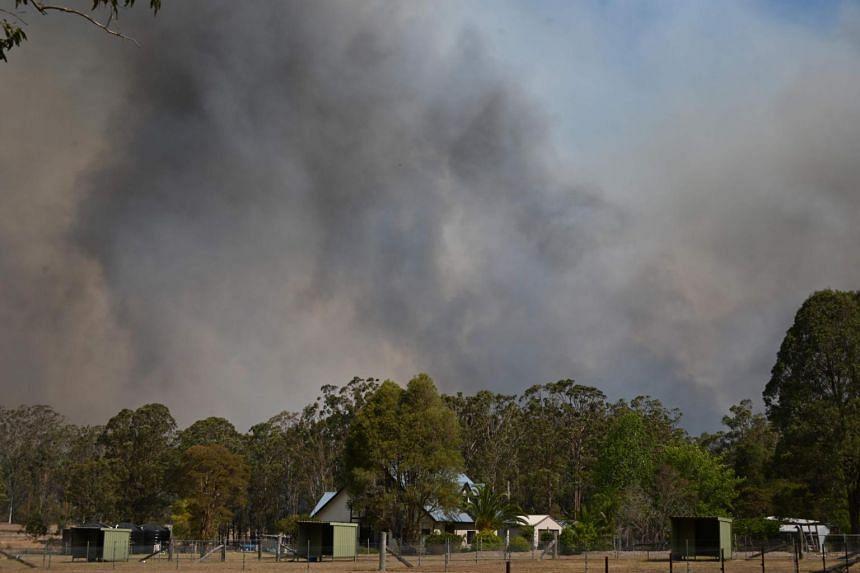 A bush fire burns near Taree, 350km north of Sydney, on Nov 12, 2019